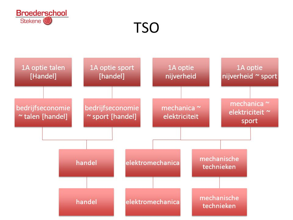 TSO 1A optie talen [Handel] bedrijfseconomie ~ talen [handel]